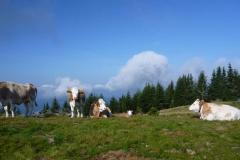 koralm-kristall-trail-etappe-2-knoedelhuette-pack-hebalm-12393-1